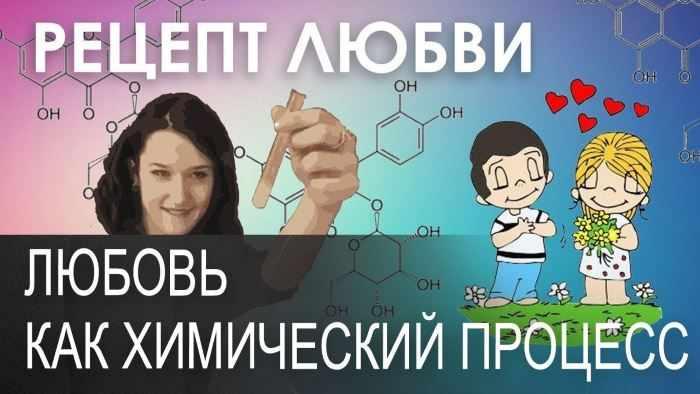 Любовь, как химический процесс
